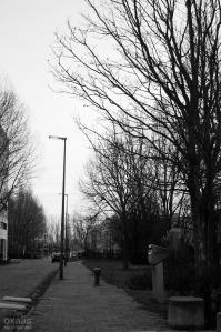 Leiden-2639